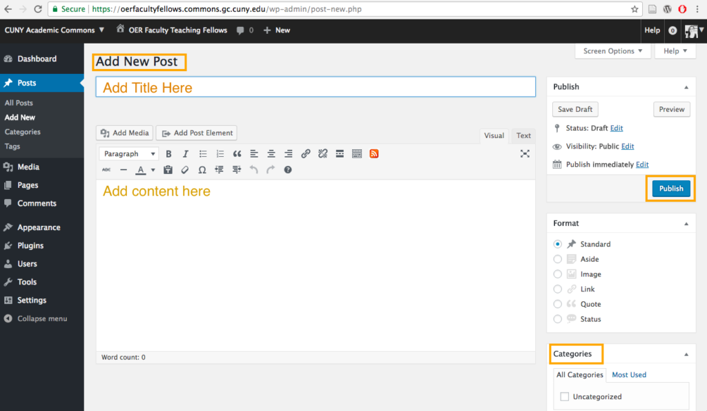 screenshot of post editor